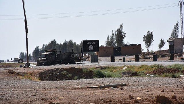 Источник: сирийская армия выбила ИГ* из поселения Дахиля к югу от Ракки