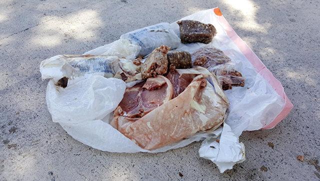 В США на крышу дома с неба свалился пакет с замороженной свининой