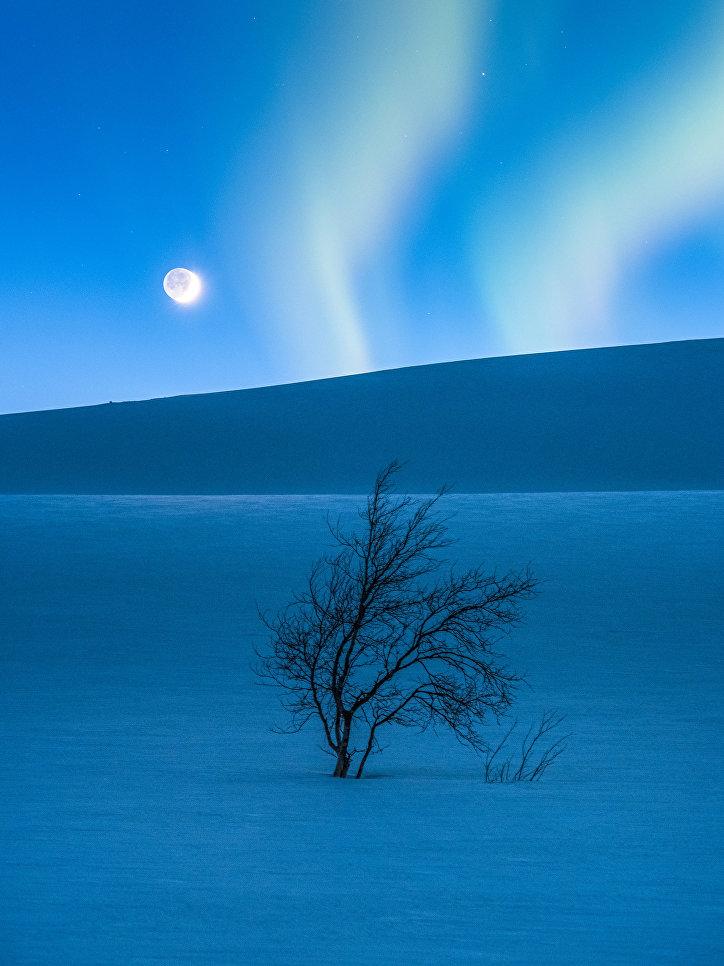 """Работа фотографа Tommy Eliassen """"Голубой час"""" (The Blue Hour). На снимке удалось запечатлеть одновременно серп Луны, Марс и северное сияние, которые окрасили снежные горы Салтфьеллет в Норвегии в голубой цвет."""