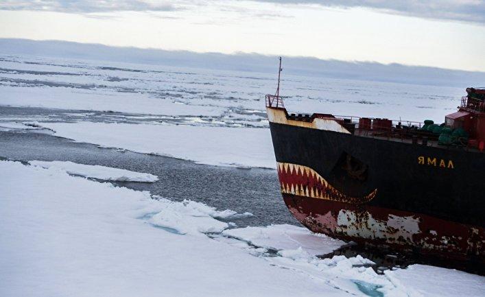 The National Interest (США): Козырная карта России в Арктике