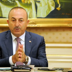 МИД Турции обвинил Германию в предоставлении убежища террористам