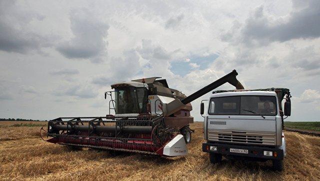 В Крыму рассказали о странах, интересующихся поставками зерна из республики