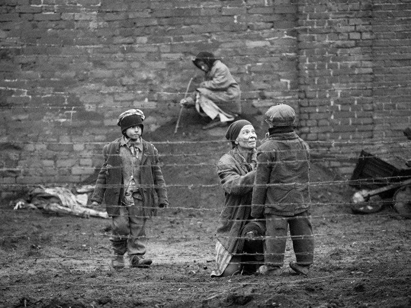 Фильм Кончаловского «Рай» вошел в лонг-лист Европейской киноакадемии