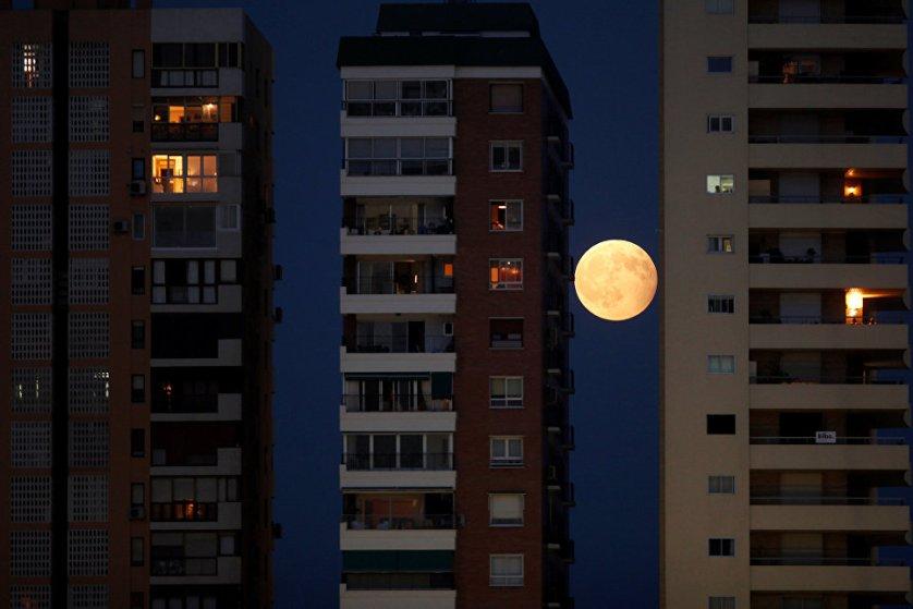 Исключение составили только северо-западные районы страны, где был еще светлый вечер и Луна не успела взойти над горизонтом, а также полуостров Камчатка и Чукотка с окрестностями, где к этому времени уже наступило утро 8 августа.