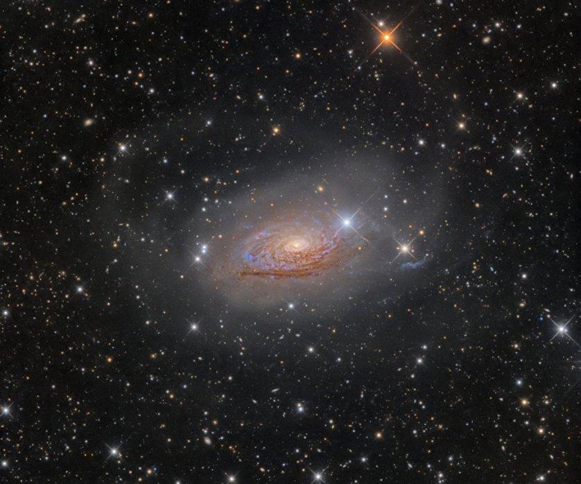 Лучшие астрономические снимки года