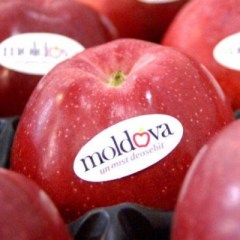 Молдавия вводит европейские требования к качеству продуктов питания