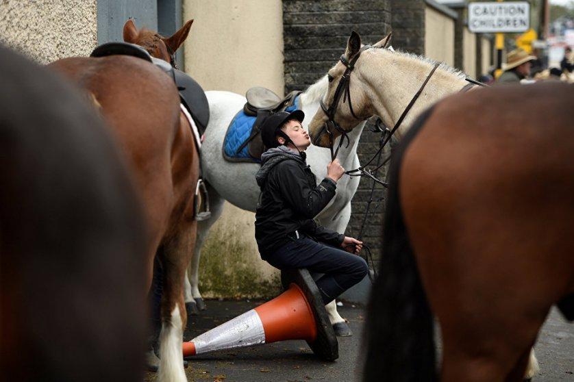 Мальчик целует свою лошадь на ежегодной ярмарке в Баллинасло, Ирландия.