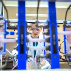 Ученые из Красноярска разработали способ разрушения раковых клеток наночастицами золота
