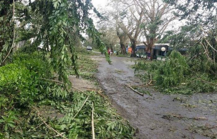 ارتفاع عدد قتلى إعصار مدغشقر إلى 51 وتشريد الآلاف