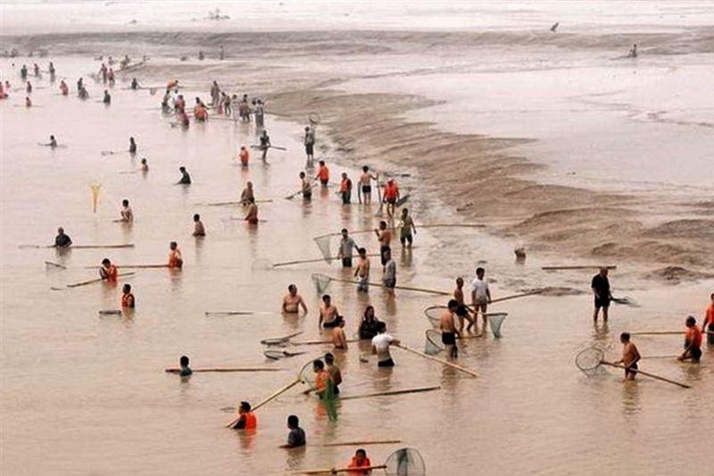 شينخوا : الصين تفرض حظرا سنويا على صيد الأسماك في النهر الأصفر