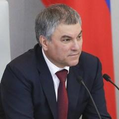 Володин прогнозирует активное замещение товаров США на рынке РФ продукцией других стран