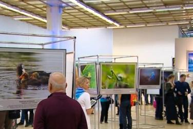 В Москве подвели итоги фотоконкурса «Дикая природа России»