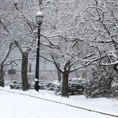 Снегопад нарушил транспортное сообщение на востоке Канады