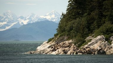 На границе Аляски и Канады произошло землетрясение магнитудой 6,2