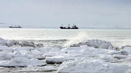 Ученые создали морозостойкую одежду для Арктики из нефтегазового сырья