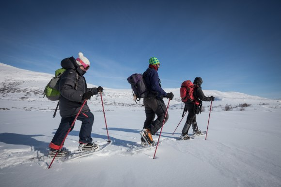 3 people cross country skiing wearing clothing to manage the cold