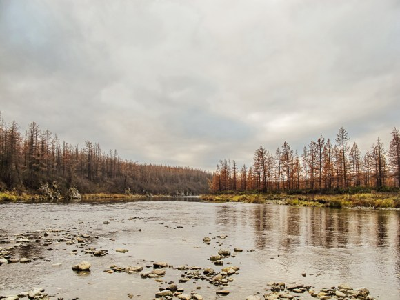 Beautiful views on the river Sob during a rafting trip with the autumn colours reflected in the water