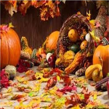 День Благодарения - Thanksgiven