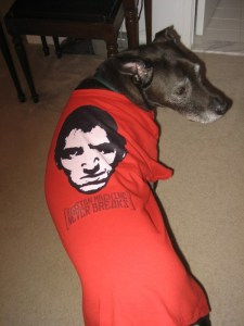 The first dog to ever sport a RMNB T-Shirt