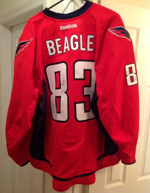 beagle-jersey