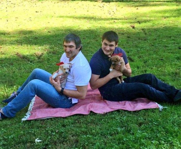 orlov-ovechkin-puppies
