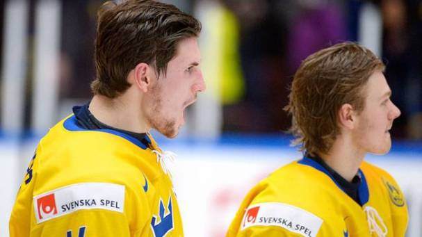 team-sweden-loses3point5