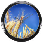 Rye Grains Field Blue Sky Farm Harvest Country Fish Tank Clocks