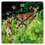 Fawn Deer In Forest During Spring Season Square Wall Clock