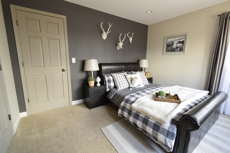 Spare bedroom with paint feature wall