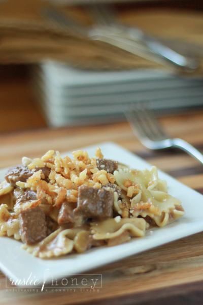 beef-and-noodle-recipe (1 of 7)