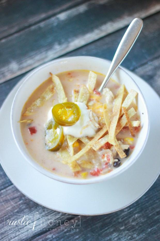 crockpot-chicken-tortilla-soup (6 of 9)