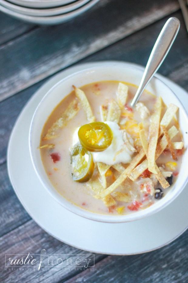 crockpot-chicken-tortilla-soup (8 of 9)