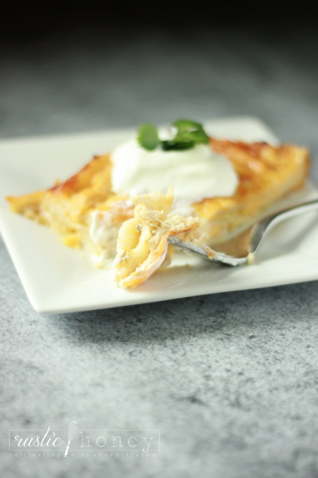 Crockpot Chicken Enchilada