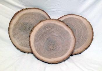 Wood Slice Centerpieces, Wood Slices, Table Decor, Tree Slices, Log Slices, Wood Cookies, Rustic Wedding Centerpiece, Wood Slabs, Wood Chargers, Wood Slices Bulk