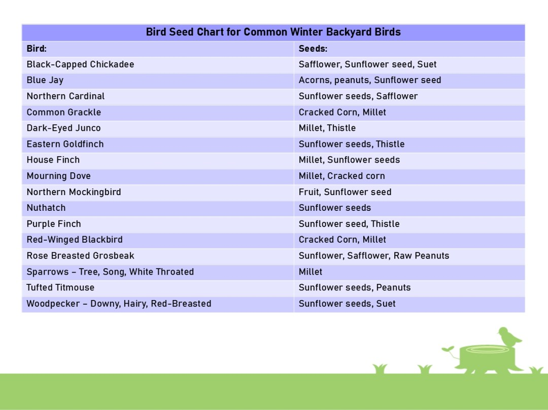 Bird Seed Chart for Common Winter Backyard Birds