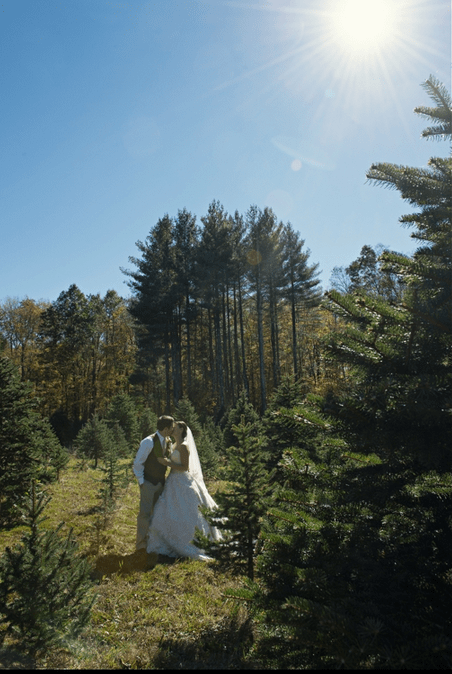 Best Christmas Wedding Venues