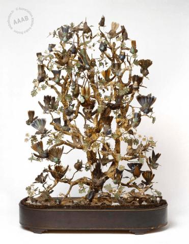 Mur- globe oiseaux exotiques Andre breton