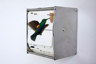 juan-fontanive-ornithology-i-flip-book-catalogodiseno-4