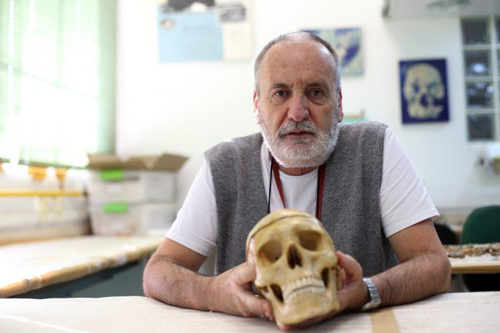 Walter Neves, em seu laboratório na USP. Foto: Tiago Queiroz/Estadão