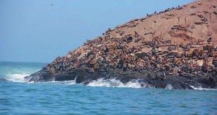 islas-del-callao