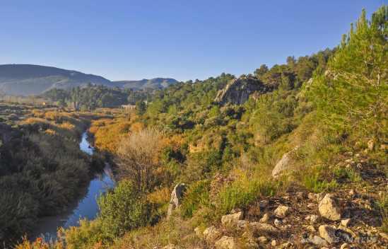 rio albaida