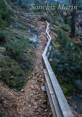 Sendero del Barranco de La Osera