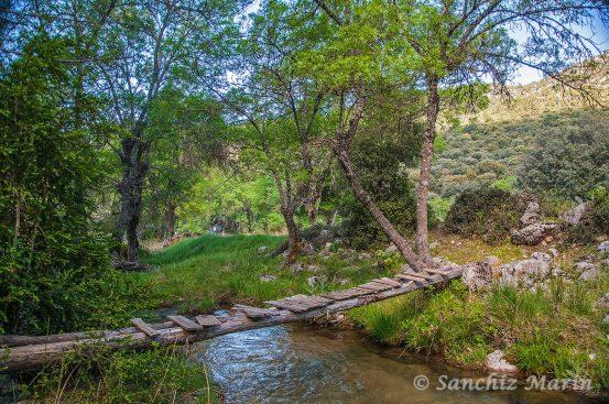 Puente sobre el rio Guadalentin