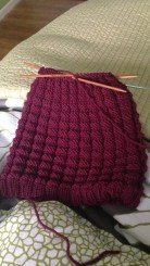 A Hat for Oren! Now working on the matching scarf.