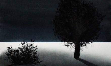 Stillhet – tilgjengelig i nettbutikken