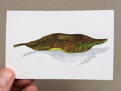 Leaf Painting-Techniques > Cards > Leafs, Styles > Nature Fragments, Techniques > Original Watercolours, Size > Small (up to 21 cm, eg. A5)-Rutheart
