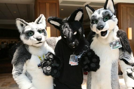 Three Fursuited Friendly Furries