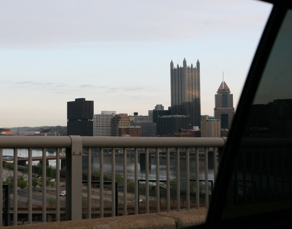 Normal Day View PPG