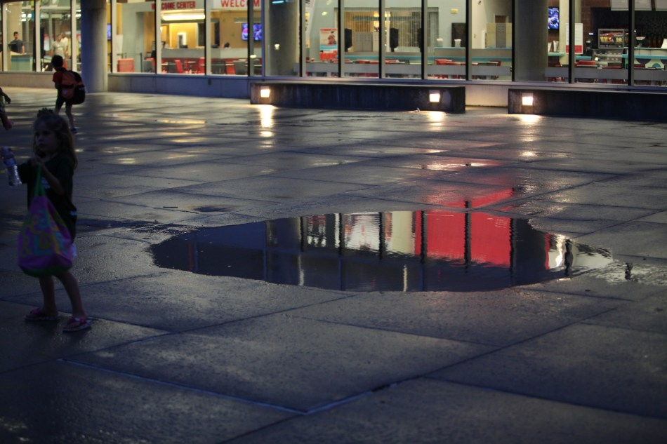 red in puddle