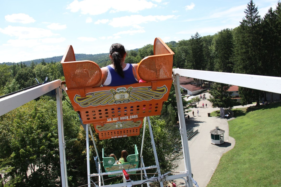 descent log ferris wheel